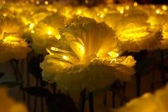 Illuminazione decorativa Fotografie Stock Libere da Diritti