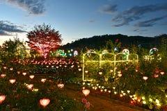 Illuminazione 2018 di inverno del parco del fiore di Ashikaga fotografia stock libera da diritti