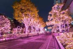 Illuminazione di inverno a Tokyo Immagini Stock Libere da Diritti
