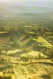 Illuminazione di mattina della valle di agricoltura Fotografie Stock Libere da Diritti