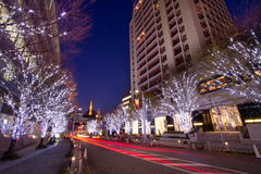 Illuminazione di natale di Roppongi a Tokyo Fotografia Stock Libera da Diritti