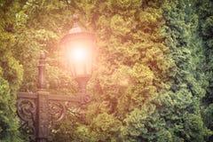Illuminazione di notte del parco della via Fotografia Stock Libera da Diritti