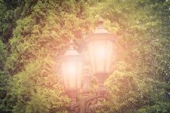 Illuminazione di notte del parco della via Fotografia Stock