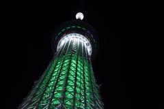 Illuminazione di notte dell'albero del cielo di Tokyo Fotografia Stock Libera da Diritti