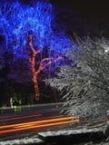 Illuminazione variopinta di Natale in via della città Immagine Stock