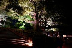 Illuminazioni del tempio di notte - Shoren-in Immagini Stock