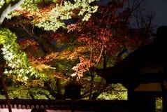 Illuminazioni del tempio di notte - Shoren-in Fotografia Stock Libera da Diritti
