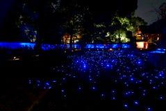 Illuminazioni del tempio di notte - Shoren-in Fotografia Stock