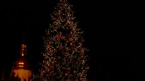 Illumintaion of the christmas tree at night. Christmas lights. Magic atmosphere stock footage