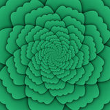 Illusion art abstract flower mandala decorative pattern green background square Stock Photography