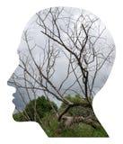 Illusion de tête humaine illustration stock