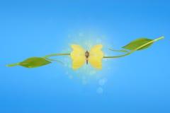 Illusione delle ali della farfalla del tulipano Fotografia Stock