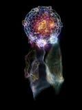 Illusioner av den dröm- stopparen Royaltyfri Fotografi