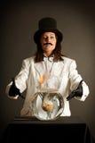 Illusionist no chapéu superior preto Imagem de Stock Royalty Free