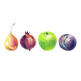 Illusration with fruits Royalty Free Stock Photo