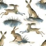 Illustartion de la acuarela de liebres salvajes marrones en el fondo blanco Modelo de Seamles sobre conejo en el prado stock de ilustración
