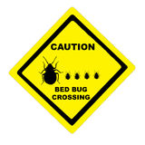 Illustated Bedbug Caution. Caution Bedbug Crossing yellow traffic sign Royalty Free Stock Photo