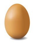 Illustation of brown egg Royalty Free Stock Photos