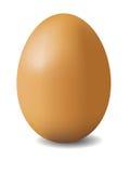 Illustation des braunen Eies Lizenzfreie Stockfotos