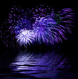 Illustation  - firework. Illustration - bright firework in a night sky and reflection Stock Images