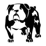 Illustr noir et blanc de graphique de vecteur de chien de bouledogue Photo libre de droits