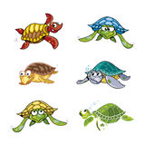 Illustraiton of Comical Turtles Cartoon Collection Royalty Free Stock Image
