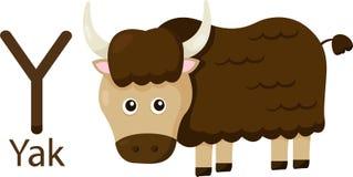Illustratör av Y med yak royaltyfri illustrationer