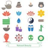 illustratören för symboler för borstekol gör teckningen tecknade som look pastell den set brunnsorten till traditionellt Arkivfoton