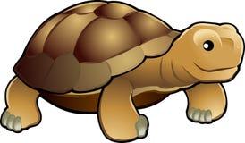 Illustrat lindo del vector de la tortuga Fotos de archivo