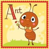Illustrated alphabet letter A and ant. Animal alphabet for the kids Royalty Free Stock Image