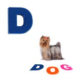 Illustrated alphabet letter D and dog on white Stock Photo