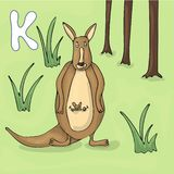 Illustrated alphabet letter K and Kangaroo. ABC book image vector cartoon. Kangaroo mother with a small kangaroo standing on the royalty free illustration