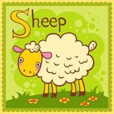 Illustrated alphabet letter S and sheep. Royalty Free Stock Photo