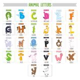 Illustrated Animal Letters. Eps 10 Stock Photo