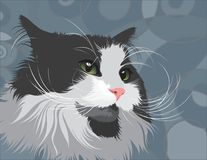 Illustrated cat. An illustration of a cat on a blue-grey pattern background royalty free illustration
