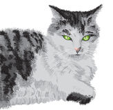 Illustrated cat portrait Royalty Free Stock Images