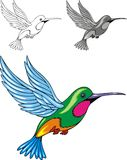 Illustrated hummingbird Royalty Free Stock Images