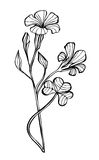 Illustrated cute flower. For your spring design Royalty Free Stock Photography