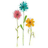 Illustrated cute flowers Royalty Free Stock Image