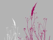 Illustrated dry grass Royalty Free Stock Images