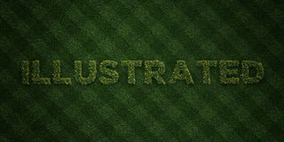ILLUSTRATED - fresh Grass letters with flowers and dandelions - 3D rendered royalty free stock image Stock Photo