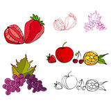 Illustrated fruit icons Stock Photos