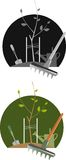 Illustrated gardening scenes Royalty Free Stock Image