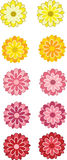 Illustrated Gerbera Flowers Stock Photography