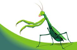 Illustrated mantis Stock Photo