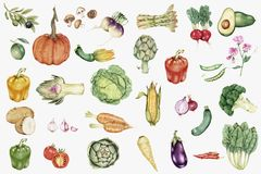 Illustrated hand drawn vegetable collection Royalty Free Stock Photos