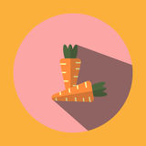 The illustrated image shows two carrot shaped icons Stock Photography