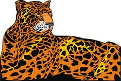 Illustrated jaguar Royalty Free Stock Photos
