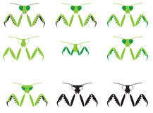Illustrated Mantis Royalty Free Stock Images