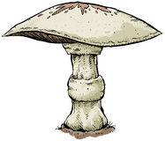Illustrated mushroom Royalty Free Stock Photography